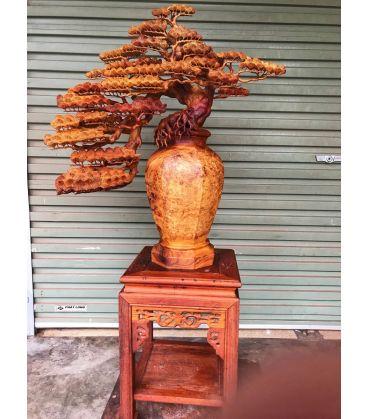 tác phẩm tiểu cảnh  Bình Tùng bonsai gỗ Nu Hương