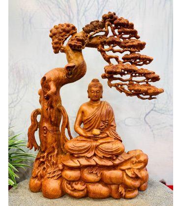 Phật Bổn Sư Ngồi Thiền Dưới Tán Tùng