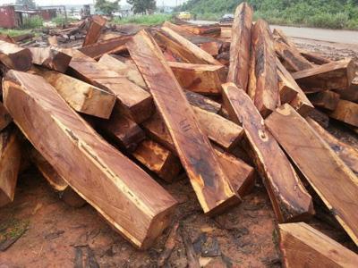 Làm thế nào để biết đó là gỗ hương thật?